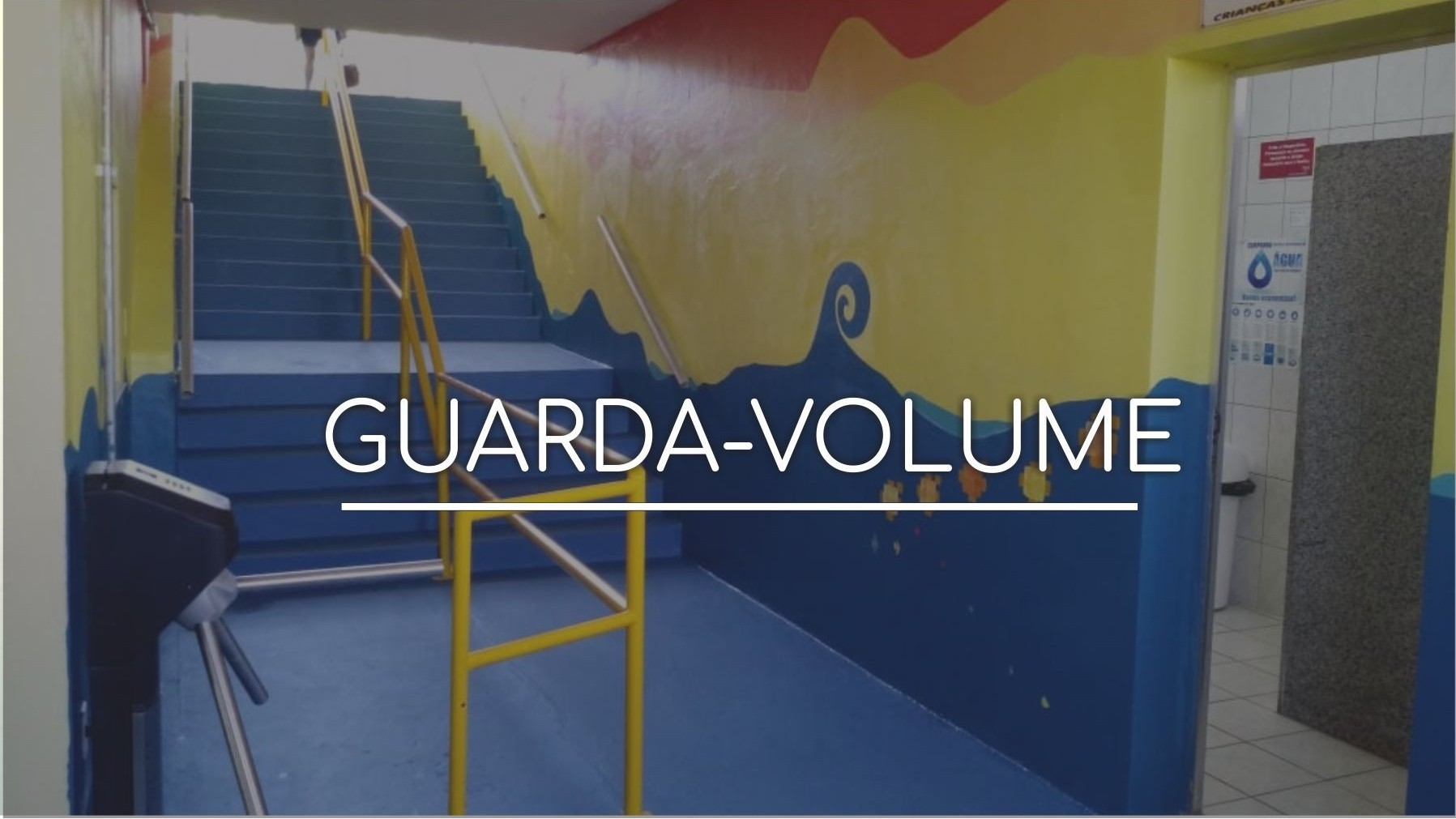 Novo Guarda Volumes